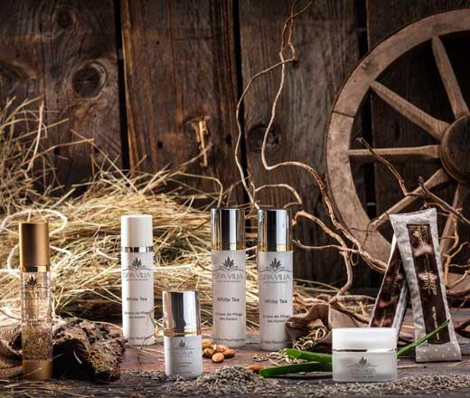 Wellness, Spa & Beauty Produkte - Shop